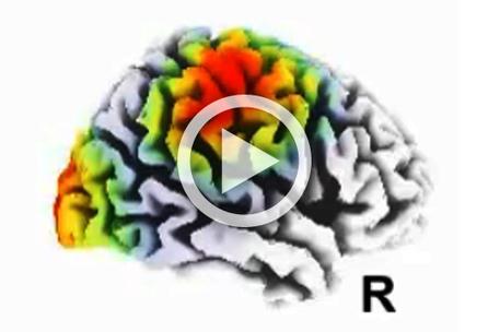 Last hours of sleep prep brain to learn - Futurity | Science | Scoop.it