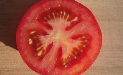La main mise de Monsanto et Syngenta sur les fruits et légumes | FRC | Les Amis de la Terre | Scoop.it