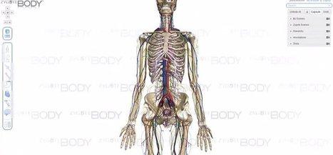 Recursos para navegar por el cuerpo humano en 3D | Tecnología Educativa | Scoop.it