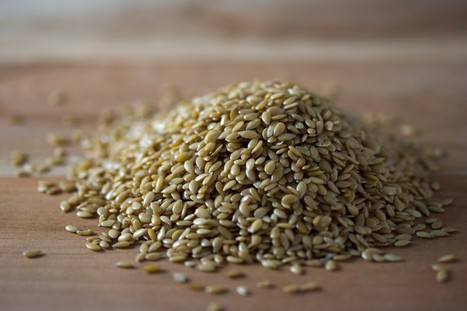 Plant-Based Foods With the Highest Omega-3 Fatty Acids | Nutritious Healthy Eating | Scoop.it