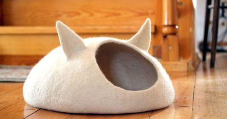 15 stylish cat beds for the fancy feline in your life | CLOVER ENTERPRISES ''THE ENTERTAINMENT OF CHOICE'' | Scoop.it