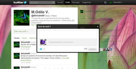 Ajouter des images sur Twitter, fonctionnement et limites | Ballajack | Méli-mélo de Melodie68 | Scoop.it