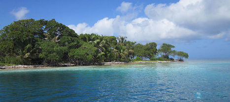 Private Island for sale - Fisherman`s Caye, Belize, Central America | Private Islands for sale and for rent | Scoop.it