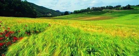 Marche. Un paesaggio favoloso - Touring Mag | Le Marche un'altra Italia | Scoop.it