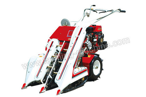 Two-row Reaper Binder with Multi functions, High Adaptation and Flexibility | Farming Machine | Scoop.it