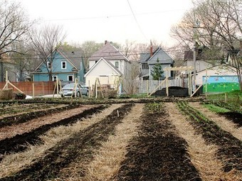 Turning Vacant Lots into Profitable Urban Farms in Minnesota   Vertical Farm - Food Factory   Scoop.it