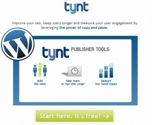 Build Links & Protect Your Content with Tynt | Chantilly Patiño™ | DIY: WEB & MOBILE | Scoop.it