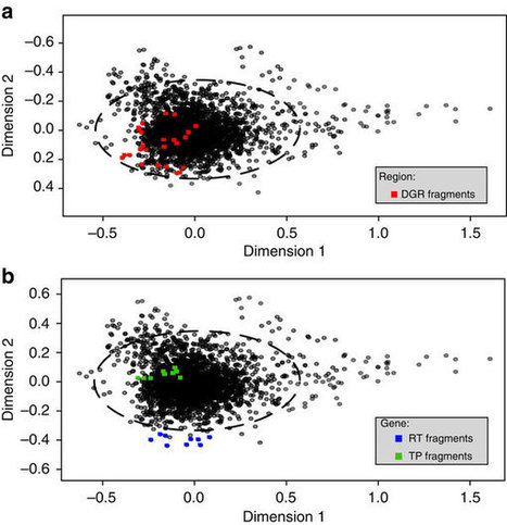Targeted diversity generation by intraterrestrial archaea and archaeal viruses | Microbiology | Scoop.it