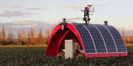 Quand les robots remplacent les Hommes dans l'agriculture (vidéo) - notre-planete.info   Managing the Transition   Scoop.it