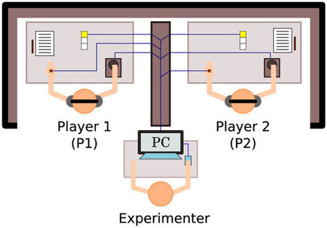 Embodied social interaction constitutes social cognition in pairs of humans: A minimalist virtual reality experiment | Social Foraging | Scoop.it