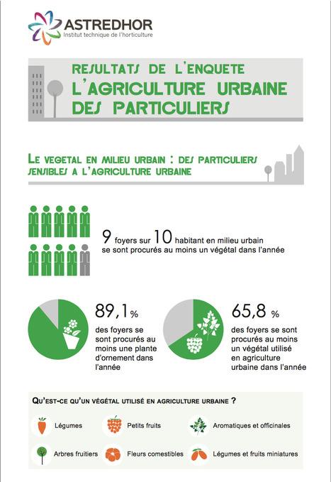 RESULTATS DE L&rsquo;ENQUETE<br/>L&rsquo;AGRICULTURE URBAINE DES PARTICULIERS | (Culture)s (Urbaine)s | Scoop.it