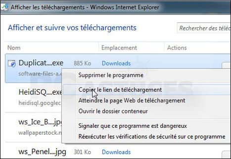 Récupérer l'URL de téléchargement d'un fichier - Internet Explorer | Time to Learn | Scoop.it