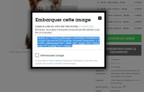 Getty Images permet l'utilisation gratuite de 35 millions d'images | Time to Learn | Scoop.it