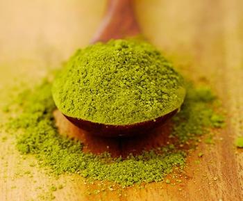 Green tea extract stops tumor activity in breast cancer   alternative health   Scoop.it