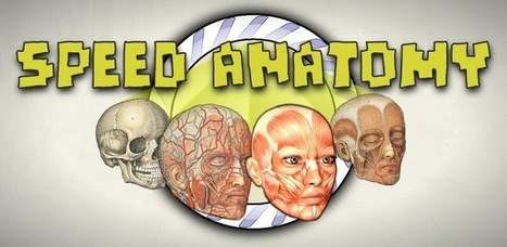 Speed Anatomy Quiz Free - Aplicacions d'Android a Google Play | Audio & Visual Dictionary What is it? | Scoop.it