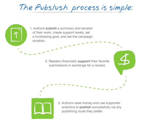 The newest evolution in publishing: Pubslush, crowd-funding for authors and readers | Social Media, Memetics, and Cognitve Science | Scoop.it
