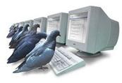Google Pigeon, la paloma 'salvadora' de los negocios locales | Gestión organización 2.0 | Scoop.it