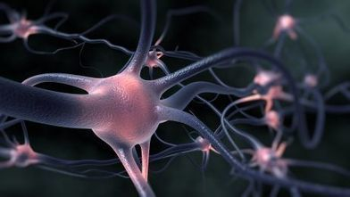 Researchers identify biological process that triggers Parkinson's disease | Disruptive Innovation | Scoop.it