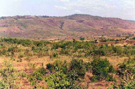 Regreening and restoring Landscapes: Humbo, Ethiopia | forest gardening | Scoop.it