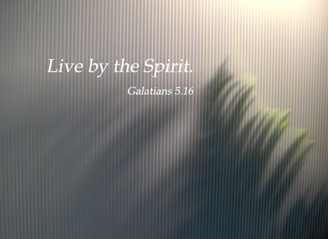 Galatians 5.16 Poster | Resources for Catholic Faith Education | Scoop.it