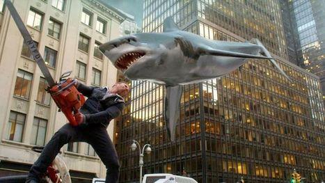 Le requin, une menace pour Internet très exagérée - Le Figaro | Requins en Péril | Scoop.it