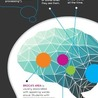 Brain and Learning Factoids