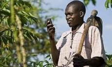 Les technologies au service de l'agriculture | Le flux d'Infogreen.lu | Scoop.it