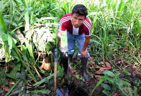 Las tierras CONTAMINADAS que Pluspetrol abandonó en la selva | MAZAMORRA en morada | Scoop.it