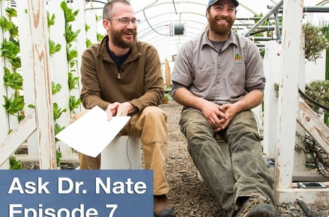 Ask Dr. Nate Episode 7: Seeds, Cold Weather Greenhouses, and Mildew | Vertical Farm - Food Factory | Scoop.it