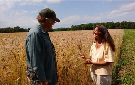 Heritage Grain Conservancy | Permaculture, Horticulture, Homesteading, Bio-Remediation, & Green Tech | Scoop.it