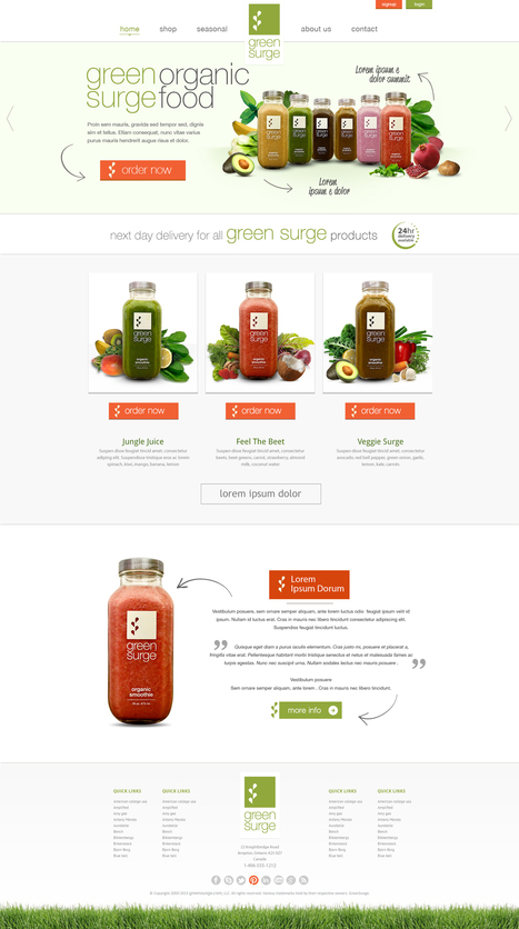 New website design wanted for GreenSurge Website design #85 by Art of Design | website inspirations | Scoop.it