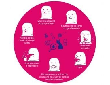 Produits sans allergènes : limiter les risques et faciliter la vie des consommateurs | Eco & Bio | Scoop.it