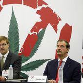 La ville de Mexico envisage de légaliser le cannabis - Le Monde | howHIGH | Scoop.it