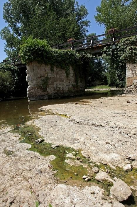 Dordogne : un manque d'eau de plus en plus inquiétant   Agriculture en Dordogne   Scoop.it