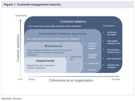 Les 4 niveaux de maturité de l'expérience client | web marketing, media sociaux et relation client | Scoop.it
