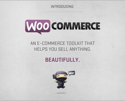 Wordpress eCommerce Development Services Philadelphia, PA | Web design Predictions | Scoop.it