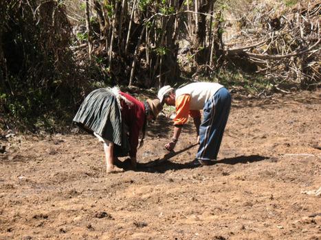 Agroécologie et développement endogène en Bolivie : un nouveau paradigme ? | Questions de développement ... | Scoop.it