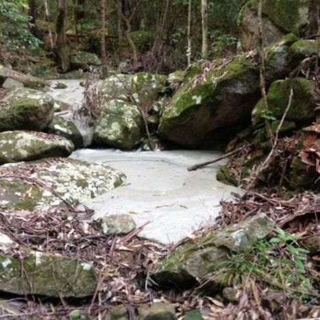 River of cement cleaned up in Sugarloaf State Conservation Area | Sugarloaf SCA | Scoop.it