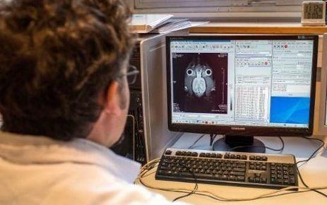 Des scientifiques contestent un ambitieux projet sur le cerveau ... - Le Parisien   Cerveau intelligence   Scoop.it