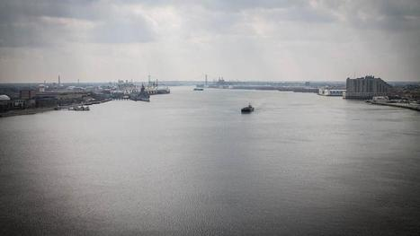 $35M to improve Delaware River water quality - Philadelphia Business Journal | Fish Habitat | Scoop.it