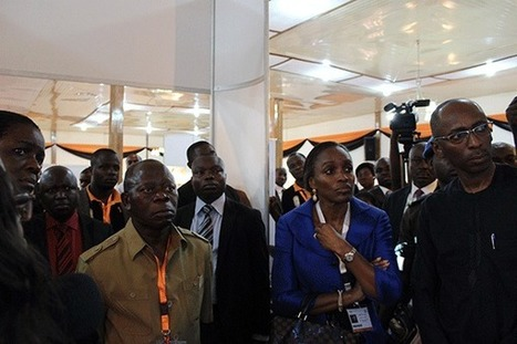 Notes From The Field: Launching Africa's First Sub-National Open Data Portal   Edo Data Blog   Open Government Daily   Scoop.it