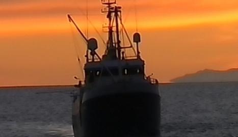 Newborn, pregnant women feared drowned off Libya - TVNZ   Saif al Islam   Scoop.it