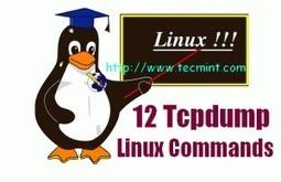 12 Tcpdump Commands - A Network Sniffer Tool | opexxx | Scoop.it
