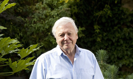 Sir David Attenborough warns against large families and predicts things will only get worse | AS Population & Tectonics (WJEC) links | Scoop.it