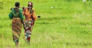 Sénégal, l'agriculture, très performante, devient un secteur économique et non plus social | Questions de développement ... | Scoop.it