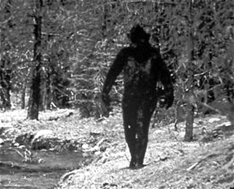 Bigfoot DNA Tests Call Science Journal's Credibility Into Question - Huffington Post | Genetic engineering and Human genetics, background reading and resources for IB | Scoop.it