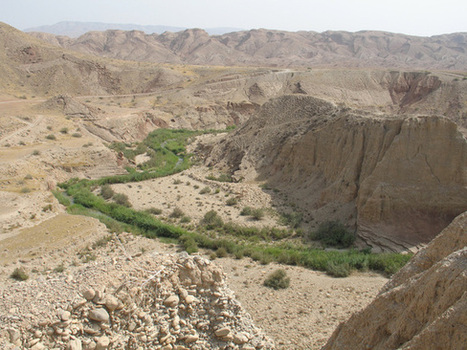 Agriculture Arose in 2 Separate Regions of Fertile Crescent | Aux origines | Scoop.it