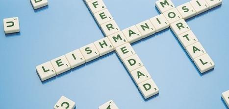 Febrero es el mes de la lucha contra la leishmaniosis | Ateuves, para el auxiliar veterinario | Leishmaniosis | Scoop.it