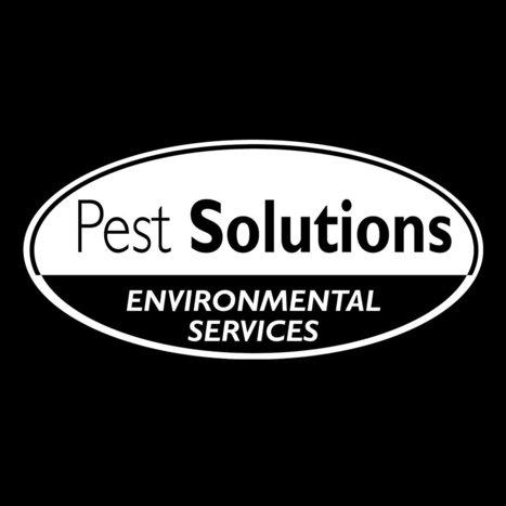 Pest Solutions   Pest Control & Bird Control Experts   Pest PreventionPest Solutions Ltd   Pest Control   Scoop.it
