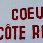 Vallée du Rhône : les vignerons s'attendent à un bon millésime 2012 | Carpediem, art de vivre et plaisir des sens | Scoop.it